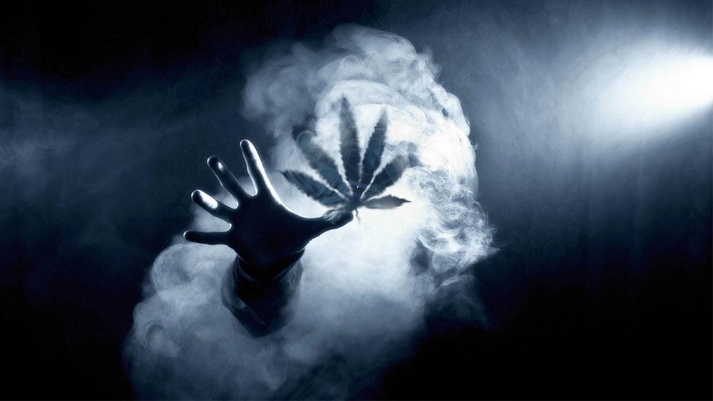 MARIJUANA IN MEXICO LEGALIZES MEDICAL MARIJUANA, Cannabis culture and Discussion