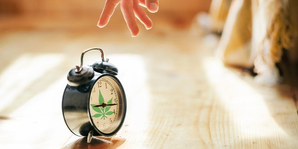 CANNABIS LEGALIZATION IMPACT, Cannabis culture and Discussion
