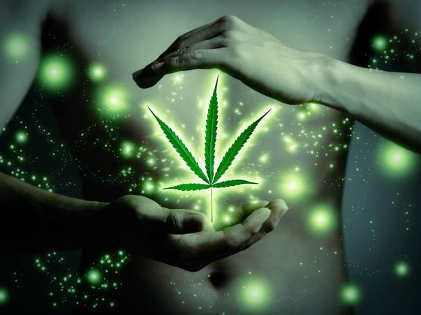 GROWING IN COCO COIR-THE ESSENTIALS, Cannabis culture and Discussion