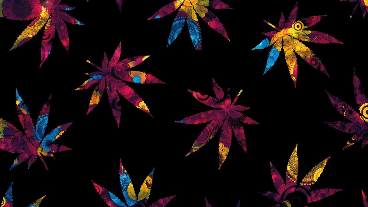 2016 THE YEAR OF MARIJUANA RESCHEDULING DRUGS?